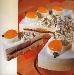 Aprikosen-Quark-Torte
